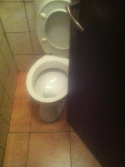 sneaky peeky toilet
